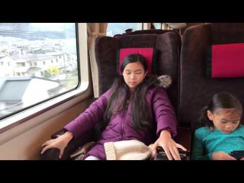 Japan Shinkansen green class(first class)/ordinary class
