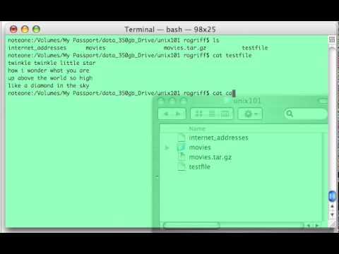 Unix 101 Commands: wc (word count)