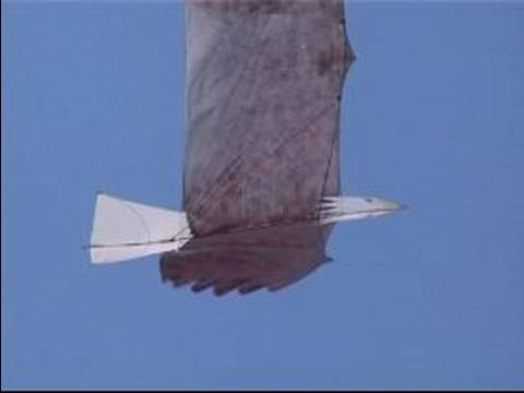 How To Make & Fly a Kite : Selecting Shapes & Sizes When Making a Kite