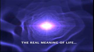 Meaning of Life Part 2 (For Free!)