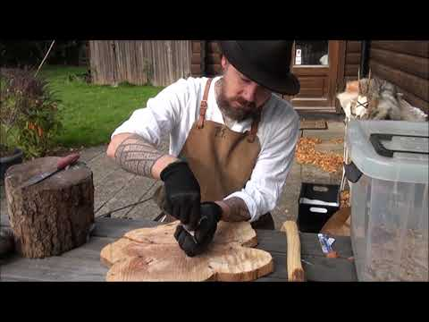 Preparing a Crow Skull for cleaning with mealworms