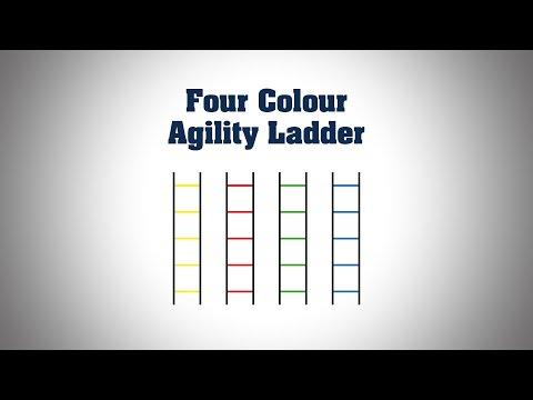 Four Colour Agility Ladder