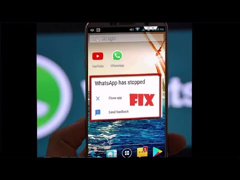 How to Fix WhatsApp Has Stopped Working Error in Android Tablet