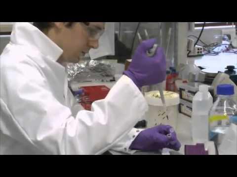 DNA Database £100m Bid To Cut Cancer Deaths