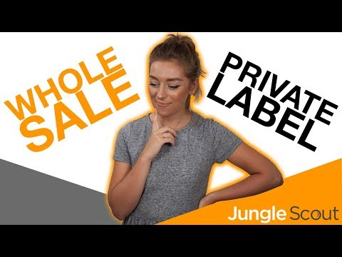 Wholesale or Private Label 🏷️ What will make the most money online! | Jungle Scout