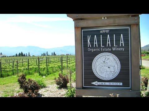 Okanagan Wineries: Kalala