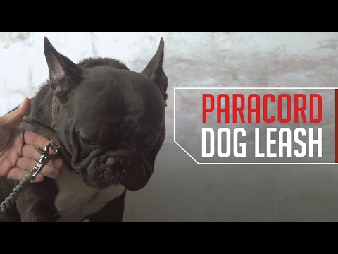How to Make a Paracord Dog Leash