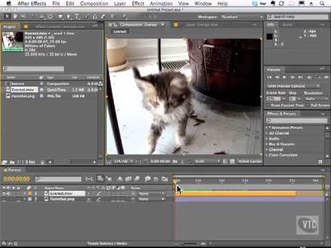 Adobe After Effect CS5 Tutorial - Loop Footage