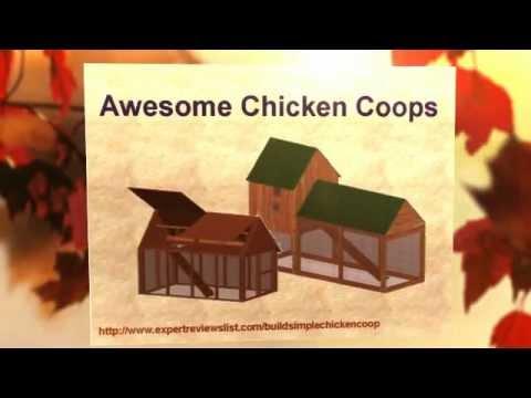 Build Simple Chicken Coop.mp4 - Visit http://www.expertreviewslist.com/buildsimplechickencoop