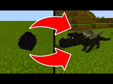 How To Hatch the Ender Dragon Egg in Minecraft Pocket Edition