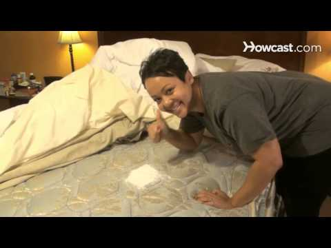 How to Get Cat Urine Out of a Mattress