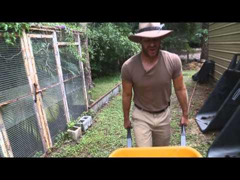 Make a Tortoise Cave! Kamp Kenan S2 Episode 16