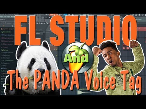 FL STUDIO - How we produced the