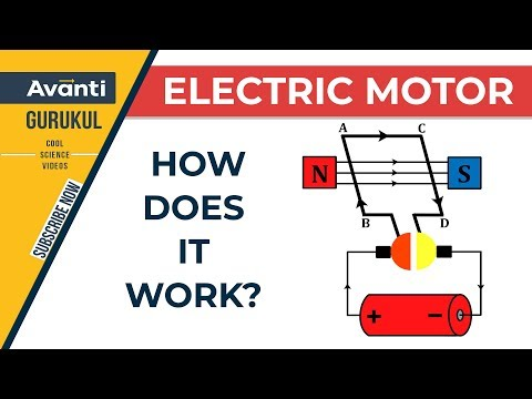 Class 10 Science - Physics - Working of an electric motor