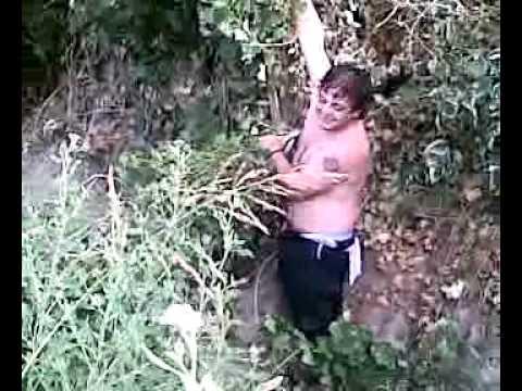 TARDE DE PILETA OMARCITO BUSCAND LA PELOTA QUE SE NOS FUE