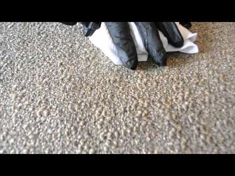 How to Clean Coffee out of Carpet