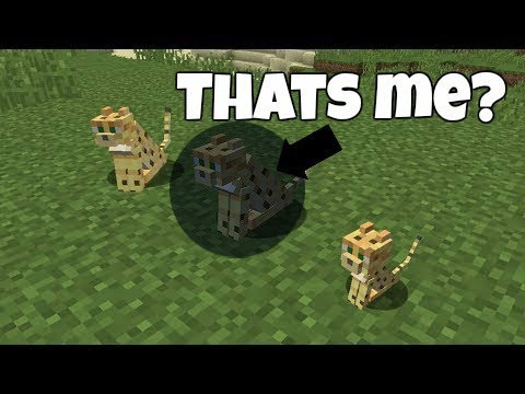 Minecraft: PE :: How To Change Into Any Mob!