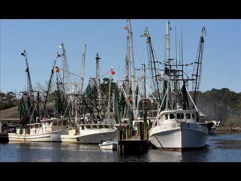 In ongoing battle, N C  fishermen want commercial licenses to remain unchanged