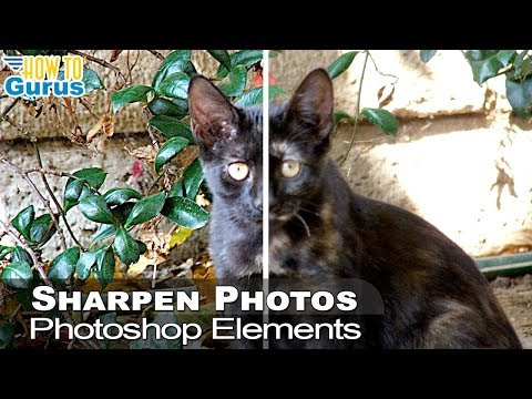 Photoshop Elements Sharpen Techniques : How Sharpen Blurry Photo 2018 15 14 13 12 11 Tutorial