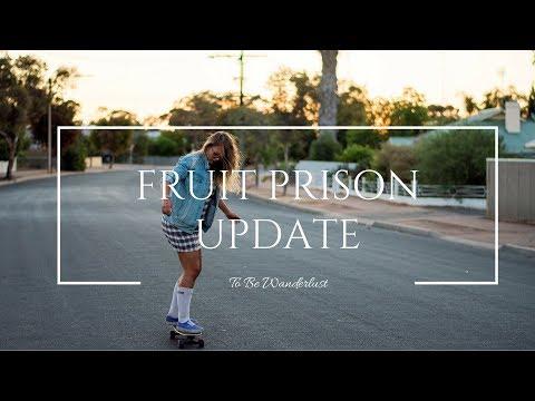 FRUIT PRISON UPDATE (88 Days Australian Visa Farm Work)