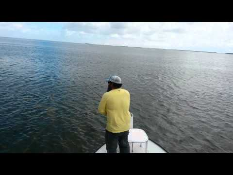 Redfish on the fly laguna madre texas