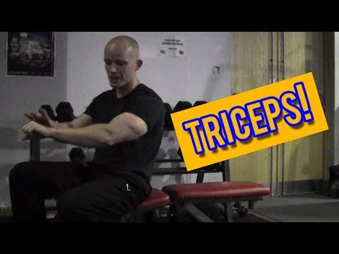 Build BIGGER Triceps With This Arm Workout