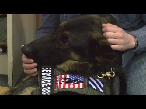 U.S. Army Veteran receives service dog through Rebuilding Warriors