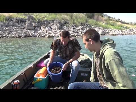Crayster cleans up on daytime crawfishing trip on snake river plain - Go Pro Footage