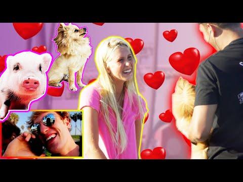 Xxx Mp4 PICKING UP GIRLS PIG VS DOG 3gp Sex