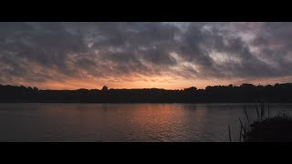 EASY Log Grade in Davinci Resolve + Film Look