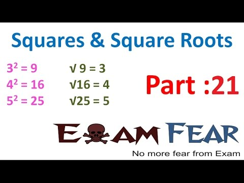 Maths Square and Square Roots part 21 (Long Division Method) CBSE Class 8 Mathematics VIII