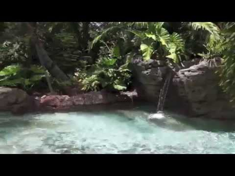 Freshwater Oasis at Discovery Cove in Orlando Florida