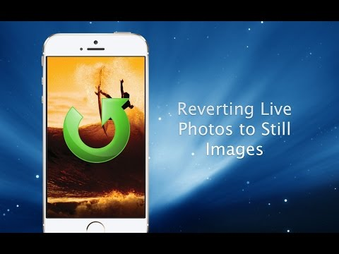 How to Change Live Photos into Still Images - iPhone Hacks