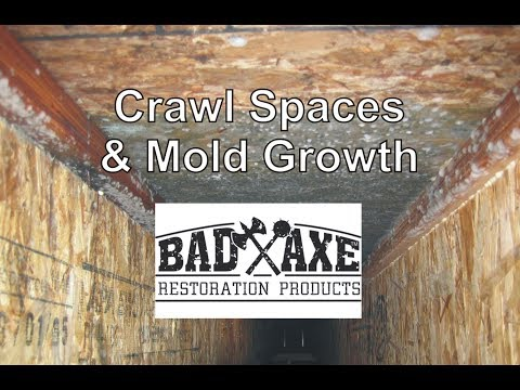 Crawl Spaces and Mold Growth by Bad Axe Restoration Products