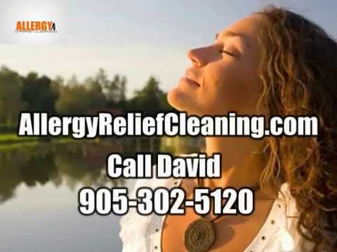 Eliminate Dust Mites With Carpet Treatment, York, Ontario