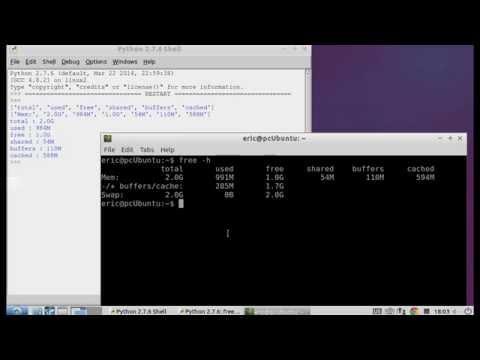 Python display memory usage on Linux