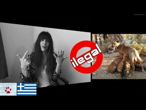 Why Greece? - Draft law penalizing animal welfare