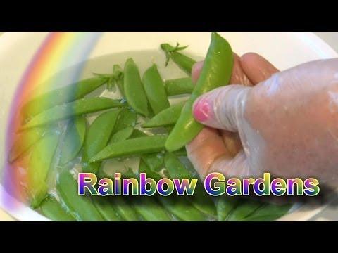 How to Trim Sugar Snap Peas