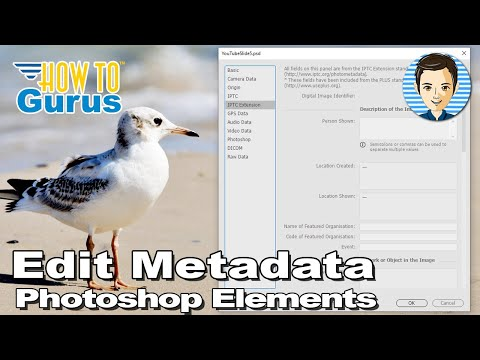 Photoshop Elements Edit Metadata : How to Edit File Info in 2018 15 14 13 12 11 Tutorial