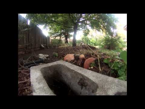 Inspiration - Clean Up A Messy Back Yard