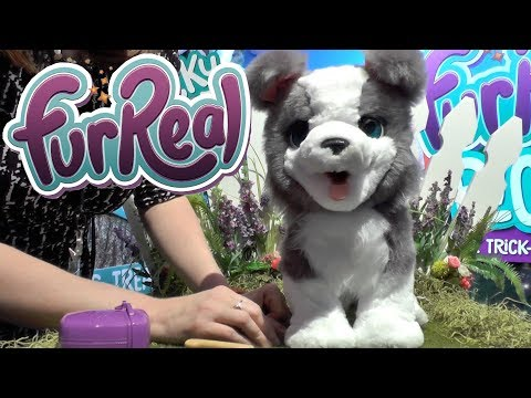 New Furreal Pets: Ricky Pup, Rock-a-too Bird and Munchin Rex