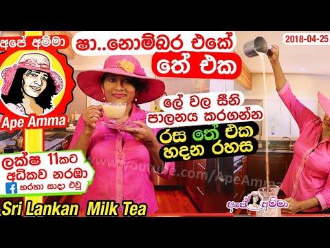 ✔ නිවැරදිව තේ හදමු!(රුධිරයේ සීනි පාලනය කරන) Sri lankan Milk Tea (English SUB) by Apé Amma