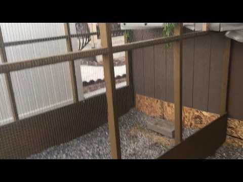 Outdoor Aviary Flight Progress Video 2