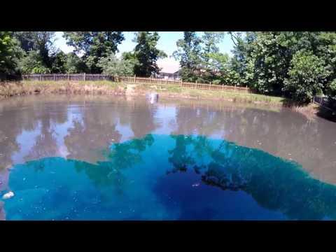 How to control pond algae with aquatic dye