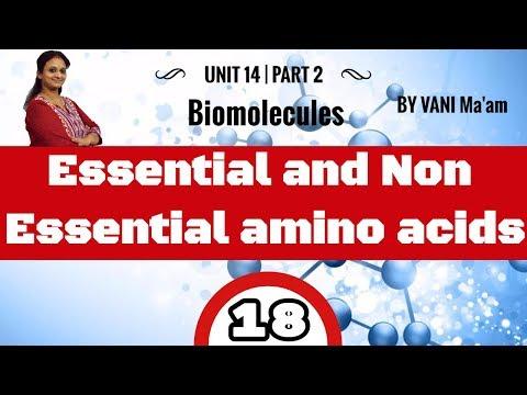 Essential and Non Essential amino acids I Part-18 I Biomolecules |chemistry cbse