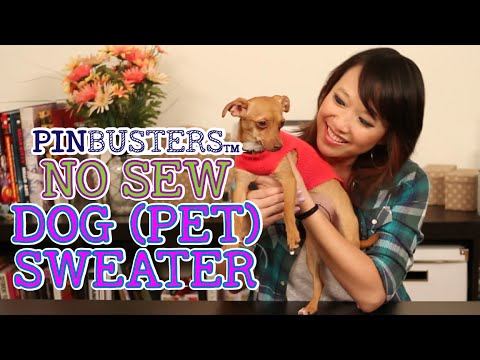 Make A Doggie Sweater With No Sewing // NO SEW DOG (PET) SWEATER