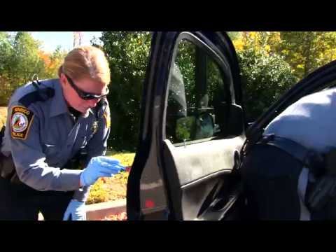 Mannequin Challenge - Henrico Police