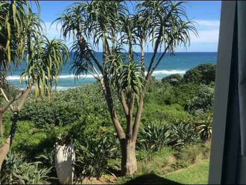 Misty Blue Bed and Breakfast - Durban - South Africa