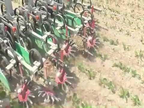 Erme inter row cultivator (weeder)