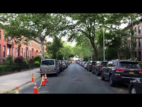 listen to the birds, Carroll Gardens, Brooklyn, New York (6-9-18)